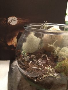 Perfect way to sneak in a little bit of  all year! Spooky skeleton terrarium with live cactus and by AlexandEmma, $20.00