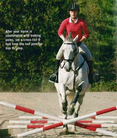 Teach Your Horse to Jump in Five Simple Steps