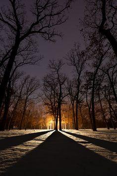 explore the light