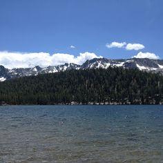 Majestic Mammoth... lake Mary