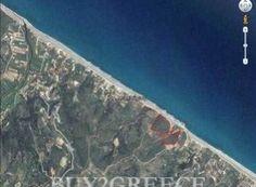 Οικόπεδο 1000 τ.μ. προς πώληση Κύμη (Εύβοια) 5272568_1    Spitogatos.gr