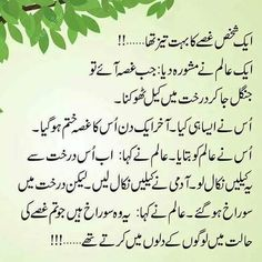 Gussa ki baat dilon me ese ched krta h jiski koi gehrai nhi hoti Urdu Quotes, Wisdom Quotes, Quotations, Life Quotes, Qoutes, Urdu Love Words, Love Poetry Urdu, Sufi Poetry, Muhammad Ali Quotes