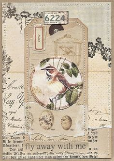 Viola: birds and nature. Atc Cards, Bird Cards, Card Tags, Collages, Collage Art, Kunstjournal Inspiration, Art Journal Inspiration, Art Journal Pages, Junk Journal