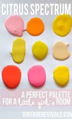 Citrus Spectrum Little Girls Room Palette