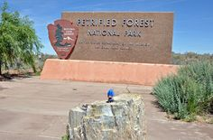 At the Petrified Forest & Painted Desert NP.