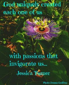 our passions