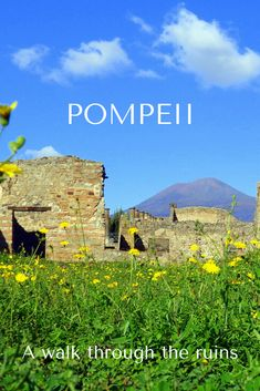 On a day trip from Rome, we toured the ruins of Pompeii and the nearby coastal city of Sorrento with Walks of Italy. #Pompeii #Italy