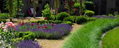 1000 images about tuin on pinterest plant catalogs baron and search - Tuin ideeen ...
