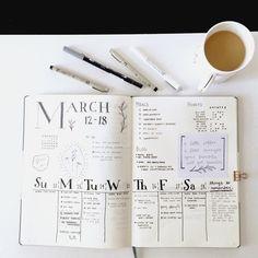 Lauren's Notebook : Photo