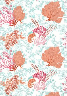 MOLOKINI, Coral, T5737, Collection Biscayne from Thibaut