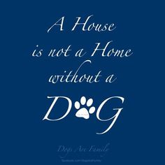My house is not my home without my furbabies. I love them all with all my heart.