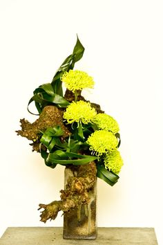 """Terrific Photographs chrisantemum Chrysanthemum Suggestions Chrysanthemums, more well known because """"mums"""" with their associates, will be late-season bloome Ikebana, Art Floral, Japanese Plants, Japanese Flowers, Vase Arrangements, Floral Centerpieces, Chrysanthemum Bouquet, Corporate Flowers, Inside Plants"""
