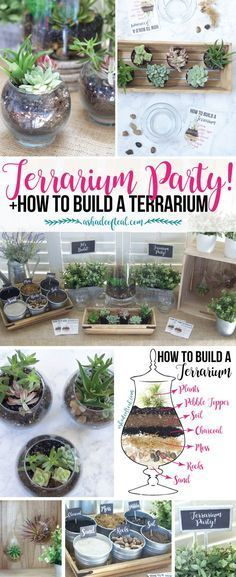 Check out this Terrarium Party! Plus let your kids make a mess while learning how to make a Terrarium. #FreeToBe #ad | A Shade Of Teal #terrarios
