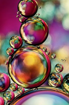 Explosion of Colour | Sharon Johnstone