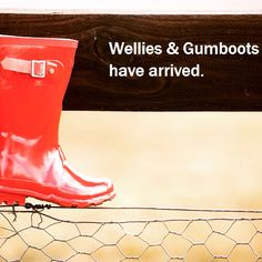 Wellies and gumboots from $29.95. Sizes 22 to 41. #lovetherain #jumpinginpuddles #gumboots Kid Shoes, Madewell, Khaki Pants, Tote Bag, Boots, Kids, Fashion, Crotch Boots, Young Children