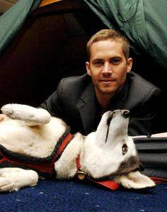 I wanna man who loves huskies and cars. He would be perfect!