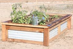 to Build Raised Garden Beds With Corrugated Metal These raised garden beds are the perfect way to add lovely character and functionality to your yard.These raised garden beds are the perfect way to add lovely character and functionality to your yard. Stone Raised Beds, Metal Raised Garden Beds, Plants For Raised Beds, Building Raised Garden Beds, Raised Flower Beds, Metal Beds, Raised Gardens, Garden Boxes, Garden Planters