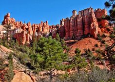 13 Utah Hikes So Easy Your Grandma Can Come Along (or your little ones)