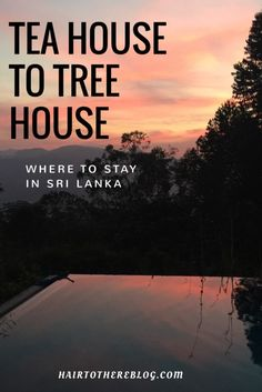 Visiting Sri Lanka soon?  Check out these unique airbnb to stay in!  Featuring a tree house just out side of Yala National Park