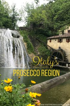 Did you know Italy's Prosecco region is one one hour from Venice making it the perfect day trip from Venice...or why not stay for a few nights. An ideal wine tasting tour from Venice, get to know Italy's under-discovered Prosecco region. I kind of wish that was a waterfall of Prosecco. Prosecco Cocktails, Easy Cocktails, Day Trips From Venice, Regions Of Italy, Wine Tasting, Did You Know, Waterfall, Tours, Adventure