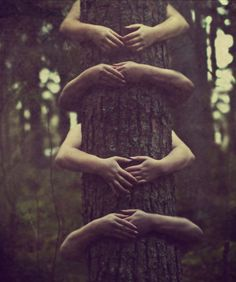 "Three Rivers Deep (book series) ""A two-souled girl begins a journey of self-discovery."" --- #elemental #devvi #nature -- tree hugging."