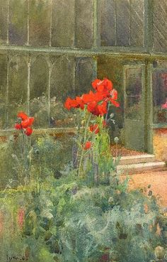 Mildred Anne Butler Poppies 1904
