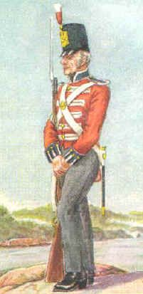 The military in OZ before Waterloo