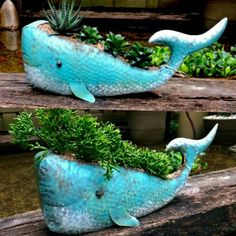 Simple design but still cute. Perfect for your porch or step Blue whale planter. Simple design but still cute. Perfect for your porch or step Garden Drawing, Garden Art, Garden Design, Ceramic Pottery, Pottery Art, Clay Fish, Fish Sculpture, Hand Built Pottery, Concrete Crafts