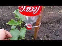 Gotejador Caseiro com Garrafa de Plástico Simples de Fazer - YouTube