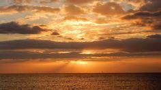 Horizon doré