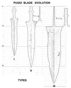 evolution of the blades and tang of the three types of pugio (I-II-III). You easily can see differences between all of them, above all between I type and latter III type. For chronology see other image