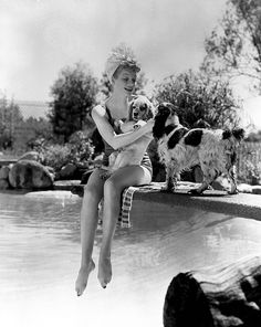 Get This Special Offer Lucille Ball 8 x 10 photo I Love Lucy The Lucy Show Here's Lucy w/Dogs on Diving Board kn I Love Lucy, My Love, Lucille Ball, Lucy And Ricky, Lucy Lucy, Desi Arnaz, Actrices Hollywood, English Springer Spaniel, English Cocker