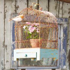 #birdcage #vogelhuis