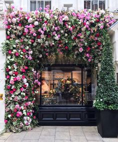 How about some to start the day? Happy Friday everyone - have. Flower Window, Flower Wall, Beautiful Flowers, Beautiful Places, Beautiful Pictures, Vitrine Design, Shop Fronts, Flower Aesthetic, Clematis