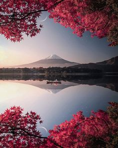 Beautiful nature in Japan ? Photo & edit by Explore. Inspire: Beautiful nature in Japan ? Photo & edit by Explore. Monte Fuji Japon, Nature Pictures, Beautiful Pictures, Best Pictures, Pics Of Nature, Scenery Pictures, Landscape Photography, Nature Photography, Japan Travel Photography