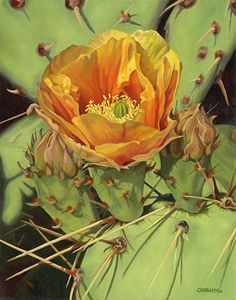 Desert Gifts by Carol Amos. Oil on canvas panel 14 Cactus Painting, Cactus Art, Succulents Painting, Desert Flowers, Desert Plants, Cacti And Succulents, Cactus Plants, Cactus Pictures, Southwest Art