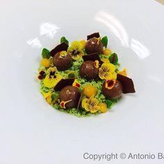 Mint Moss, Frozen Chocolate Liquid Truffle soaked in Mint glaze, Dehydrated Mousse #theartofplating
