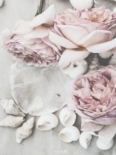 #rose poudre #french pink #cassandre et quentin