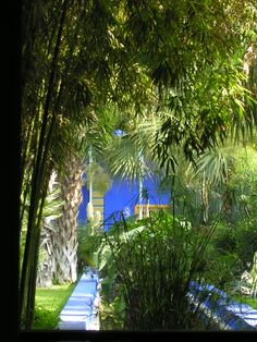Marjorelle Gardens in Marrakech. Recreate this look iconic blend of green and cobalt blue with the help of Maroque. www.maroque.co.uk/