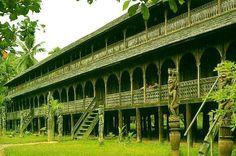 Kalimantan Tour Operator in Indonesia, serve Traveling Routes Hinterland Borneo Kalimantan Island, Jungle treks, Dayak indigenous Culture, A...