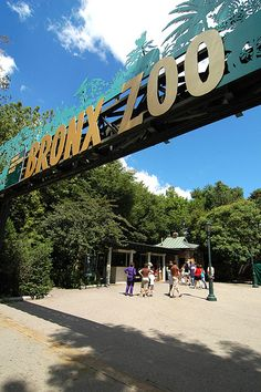 Managed by the Wildlife Conservation Society, the Bronx Zoo is located in Bronx Park and represents one of the largest metropolitan zoos in the world. The zoo features various special mechanical rides that are great for children.  Wednesdays are suggested donation day. Take the #2 train to Pelham Parkway and arrive directly at the Zoo's Bronx River Entrance.
