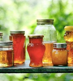 """honey image from """"Keeping Bees"""" by Ashley English"""