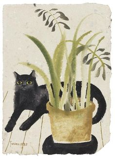 Mary Fedden black cat with plant