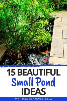 Small ponds with fish or pond plants are ideal for small backyards. Here are some beautiful garden pond ideas for small yards. #pond #backyardpond #gardenpond Small Backyard Ponds, Ponds For Small Gardens, Small Ponds, Small Backyards, Backyard Waterfalls, Backyard Patio, Backyard Ideas, Small Fish Pond, Koi Fish Pond