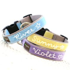 River Personalized Dog Collar
