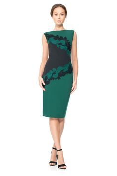 Pipit Dress   Tadashi Shoji New Arrival 2015