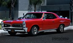 Beautiful Classic GTO. See more at: http://www.facebook.com/blaksheep.Automotive.Photography