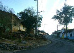 Ziquítaro. La mañanita del 12, en Los Nopales Altos. Allá, al fondo, con la banda de Ichán, Fiesta del 2012