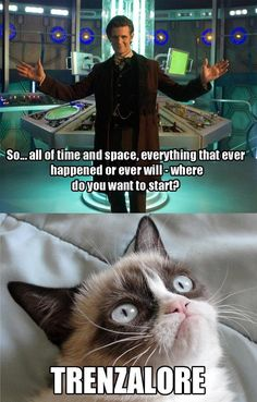 I usually don't pin 'Grumpy Cat' stuff, but this is just hilarious.