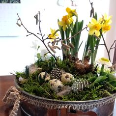 La nuova vita della tortiera The Effective Pictures We Offer You About spring wreaths diy fabric A quality picture can tell you many things. Diy Spring Wreath, Diy Wreath, Easter Wreaths, Christmas Wreaths, Moss Wreath, Diy Monogram, Quail Eggs, Flower Pots, Flowers